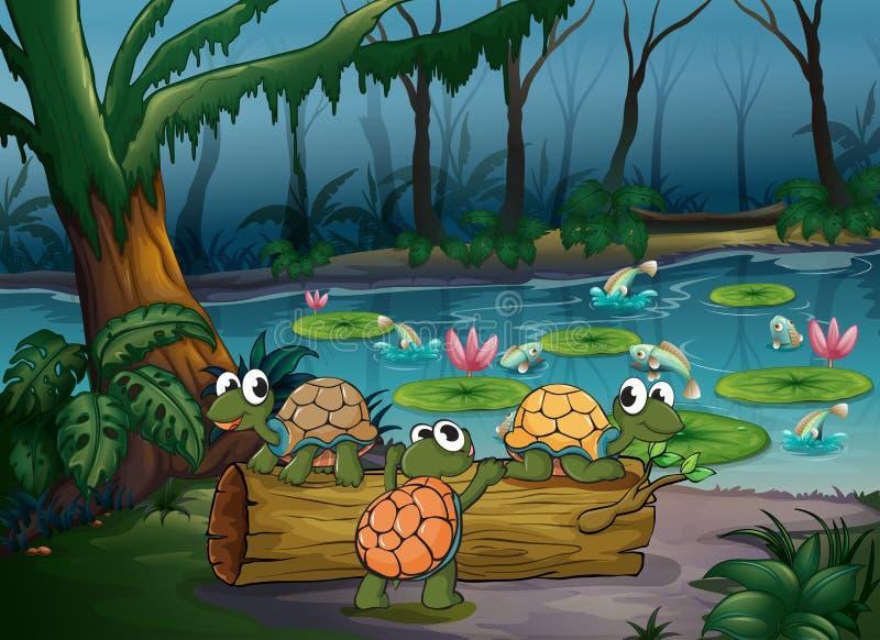 Un bosque con las tortugas y los pescados en la charca stock de ilustración