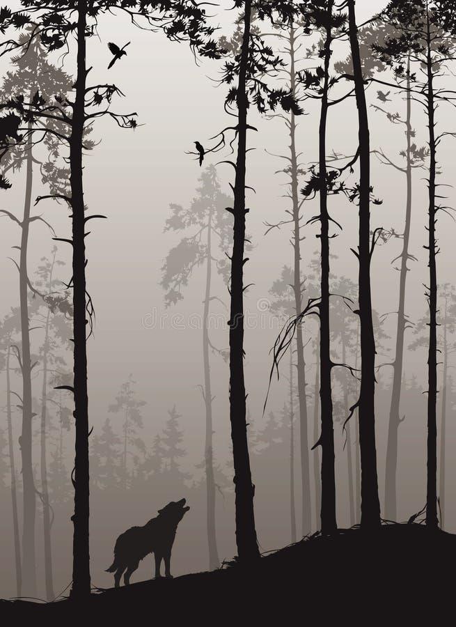 Un bosque del pino con los lobos y los pájaros stock de ilustración
