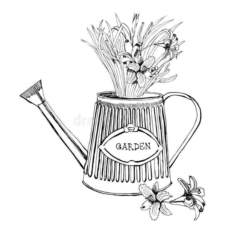 Un bouquet d'été fleurit dans un arrosoir Graphi tiré par la main illustration libre de droits