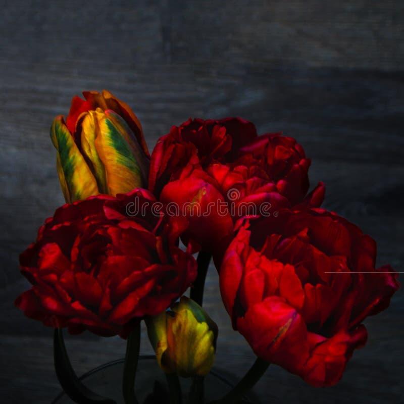 Un bouquet des fleurs sur un fond en bois fonc? Tulipes rouges de pivoine dans un vase Endroit pour votre texte Vue sup?rieure photo stock