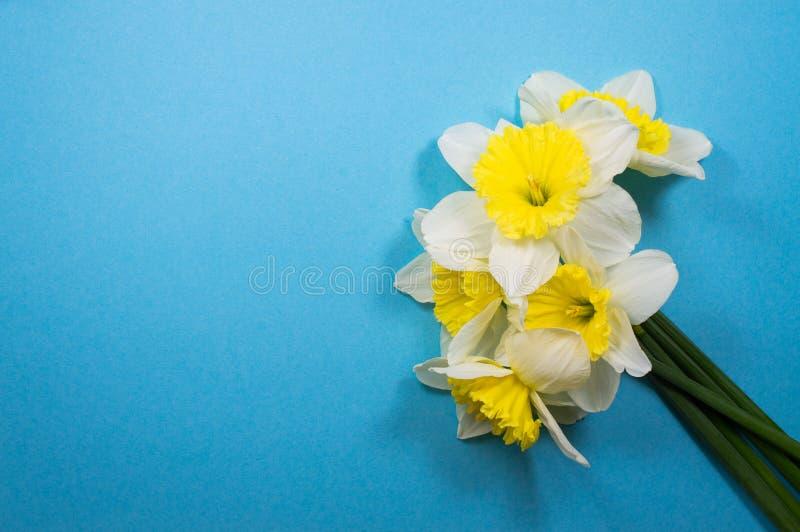 Un bouquet des jonquilles blanches images stock
