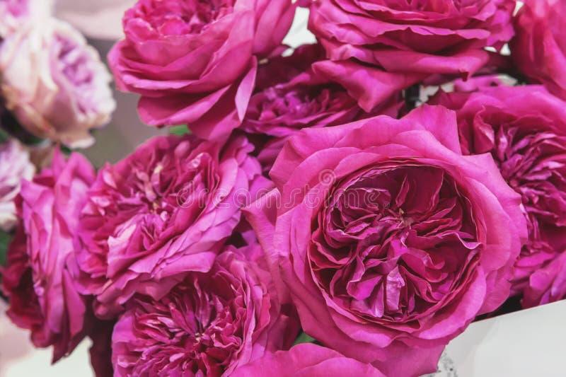 Un bouquet des roses de couleurs multi exotiques Le caméléon fleurit avec les pétales colorés aux bords Marché de fleur image libre de droits