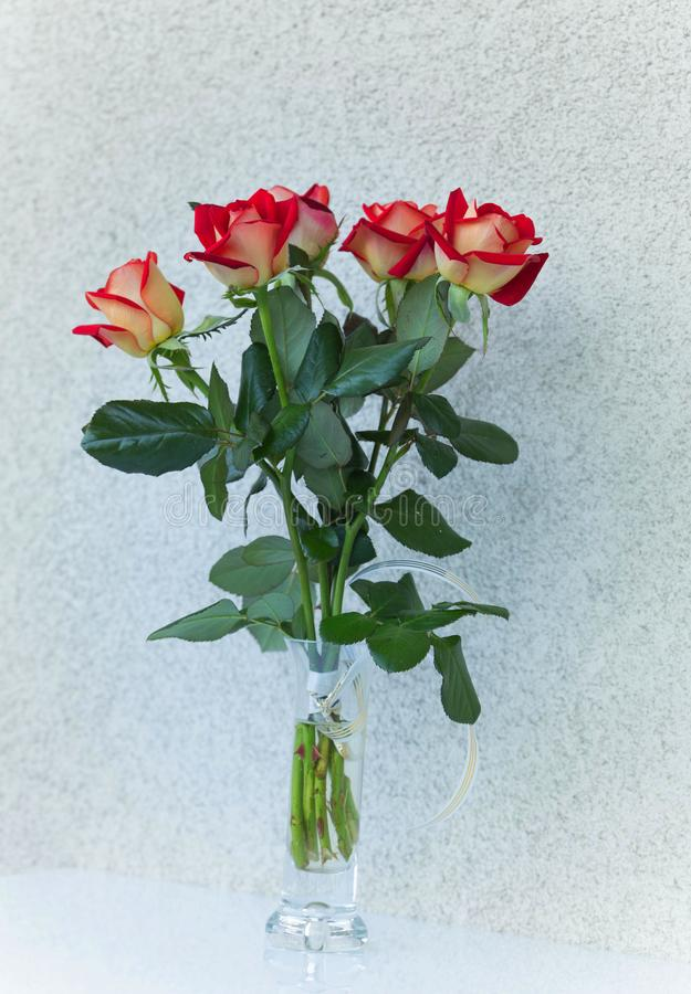 Un bouquet des roses de floraison dans un vase photos stock