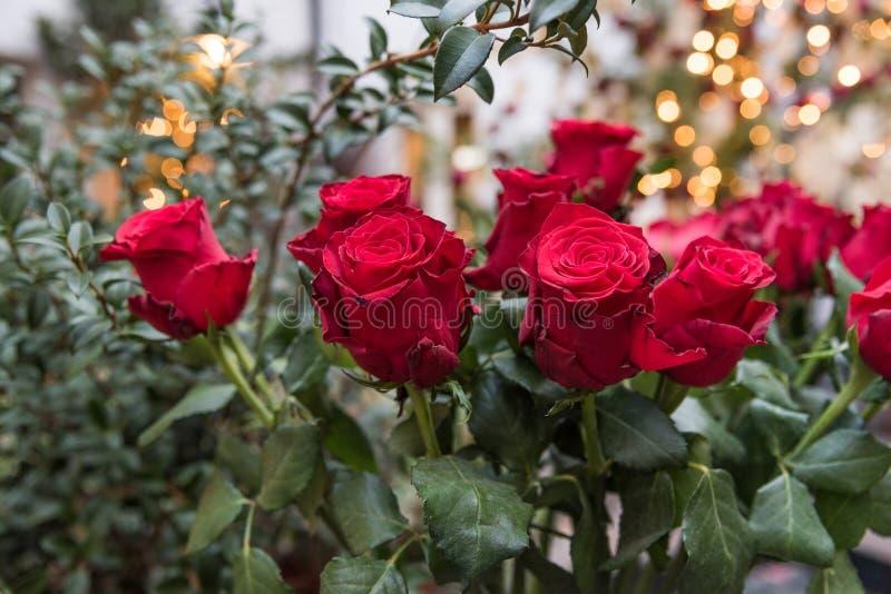 Un bouquet des roses rouges photographie stock