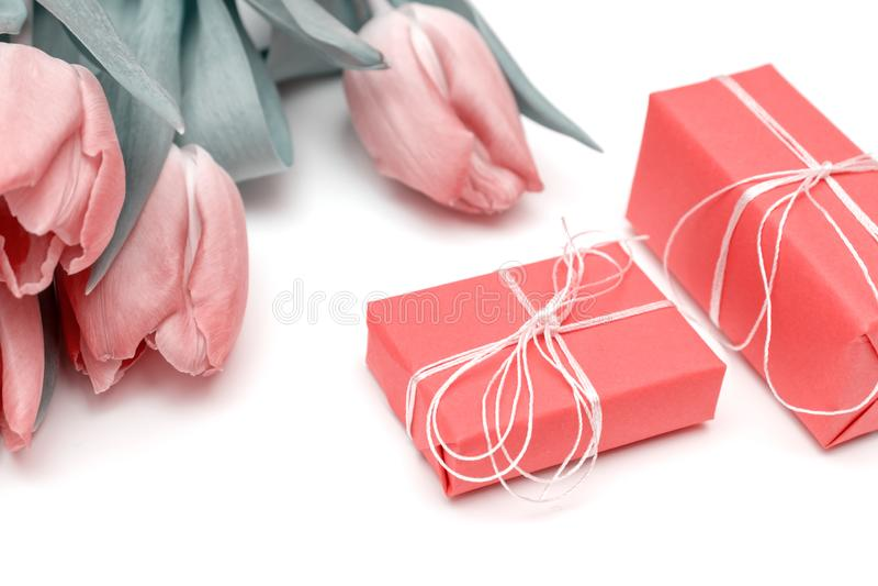 Un bouquet des tulipes roses de fleurs de ressort et du fond blanc de jn rouge de boîte-cadeau image stock