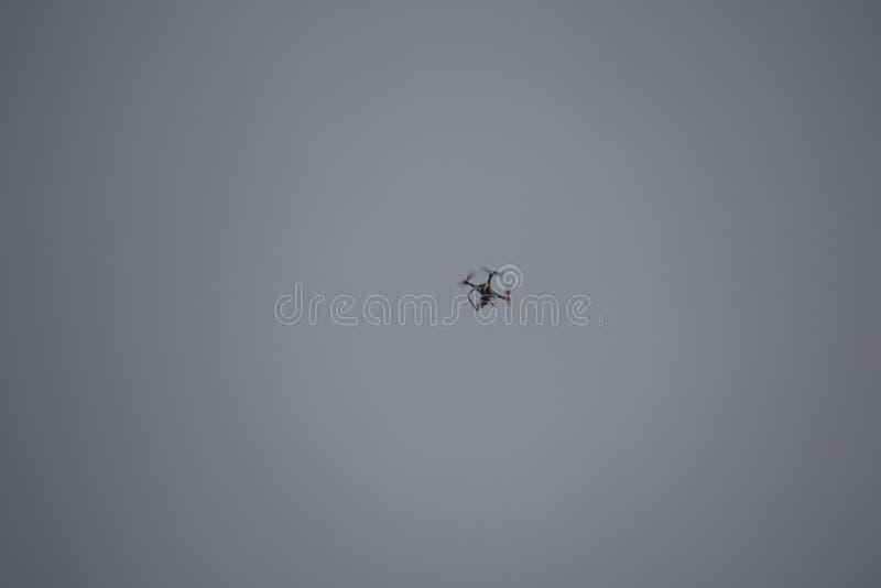 Un bourdon planant dans le ciel photographie stock