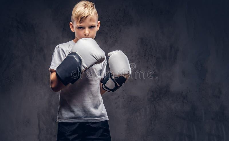 Un boxeador hermoso del niño pequeño con el pelo rubio se vistió en una camiseta blanca en los guantes listos para luchar Aislado foto de archivo