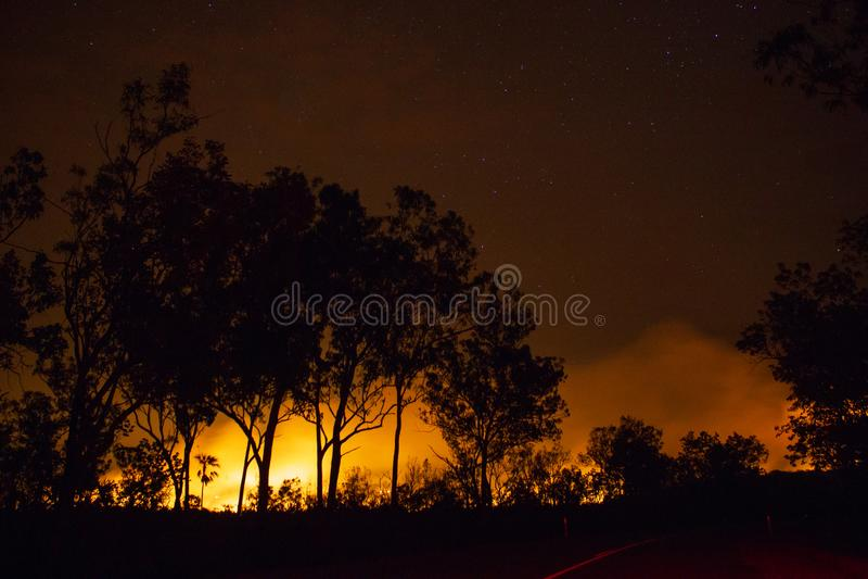un bushfire, bosque es realmente brillante debido al fuego, parque nacional del litchfield, Australia fotografía de archivo