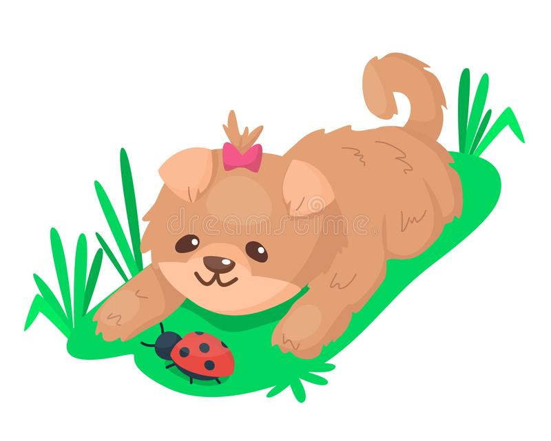Un cachorro lindo jugando con ladybug en la hierba Perro marrón bastante mojado Ilustración de dibujos animados ilustración del vector