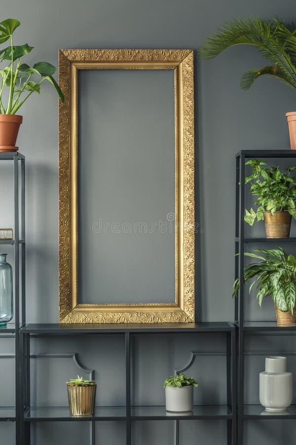 Un cadre et usines d'or dans des vases sur les étagères noires à côté d'un gris photos stock