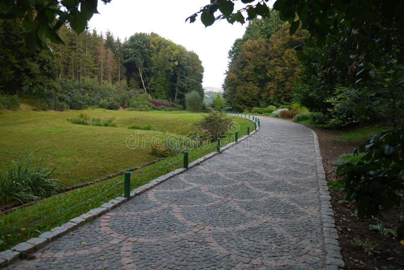 Un callejón del parque del recorrido alineó con las tejas en el fondo de árboles verdes decorativos hermosos imagenes de archivo