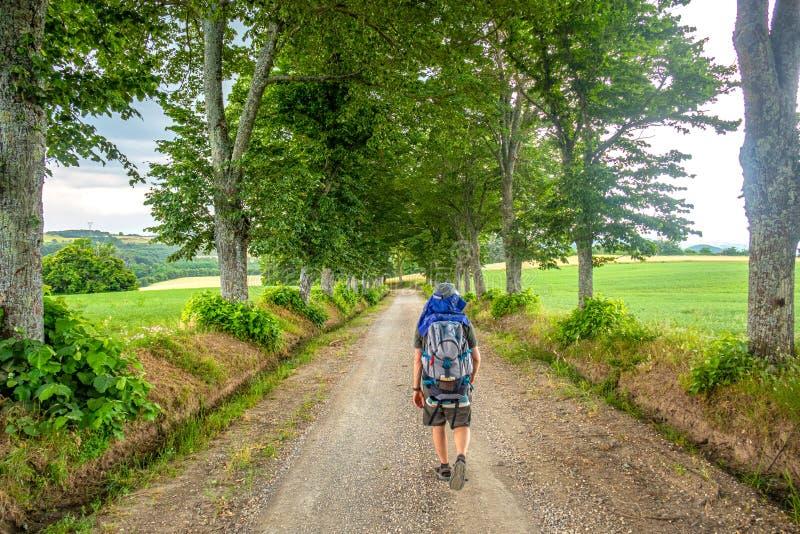 Un caminante solo con la mochila a lo largo de un camino en el centro Italia del campo, junio de 2019, con los árboles sobre él foto de archivo libre de regalías