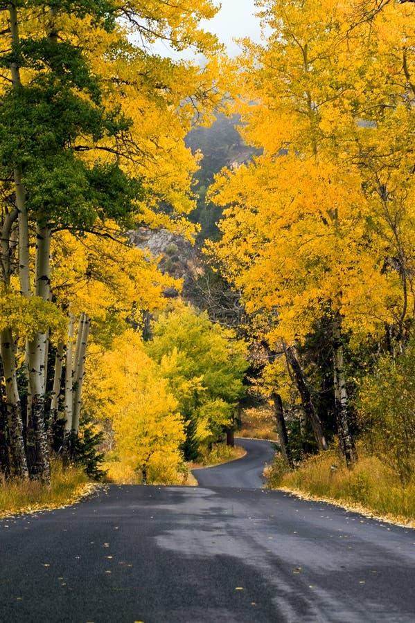 Un camino colorido del otoño del país foto de archivo