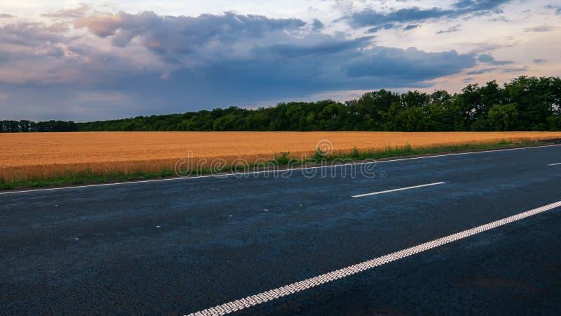 Un camino de tierra que lleva a una distancia entre los campos florecientes imagenes de archivo