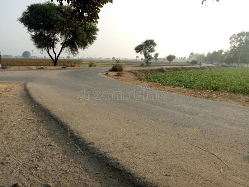 Un camino del zigzag junto a las cosechas agrícolas foto de archivo libre de regalías