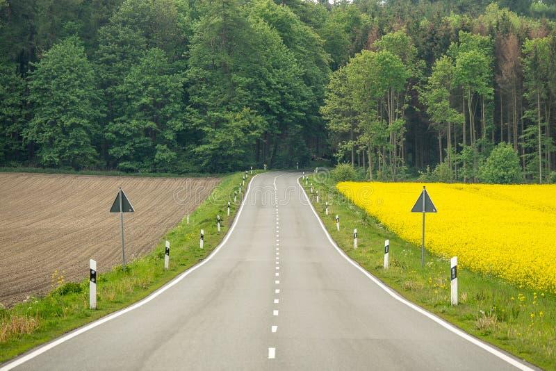 Un camino a trav?s de un campo con las flores coloreadas amarillas de la rabina imágenes de archivo libres de regalías