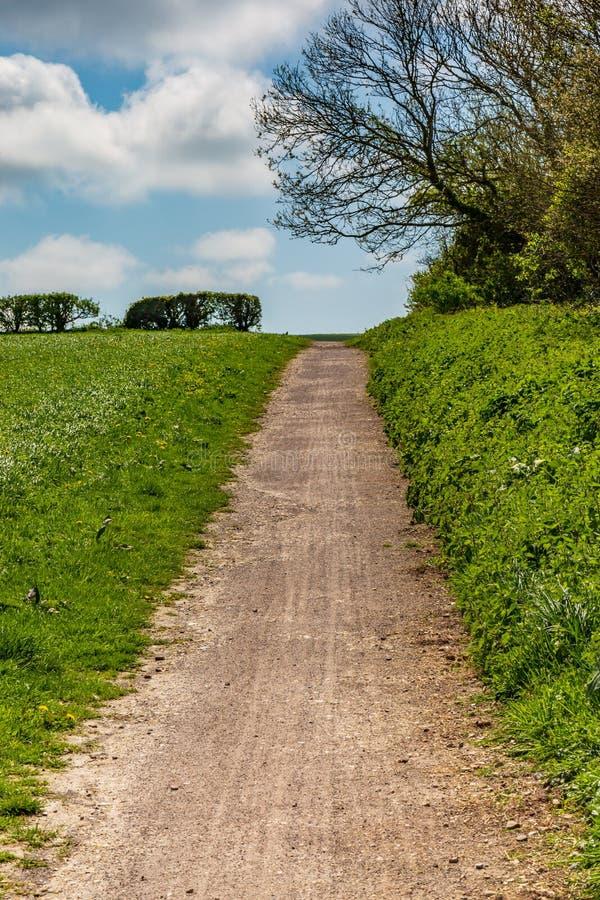 Un camino a través de campos fotografía de archivo