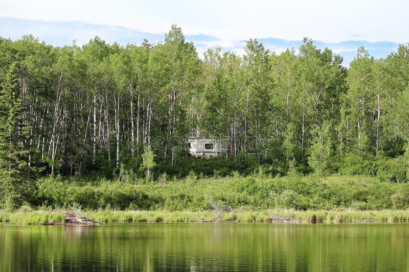 Un campeggiatore nascosto negli alberi accanto ad acqua fotografie stock libere da diritti