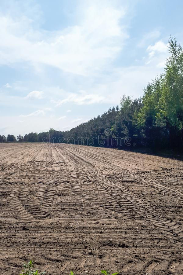 Un campo coltivato e molte piste della gomma del trattore immagine stock