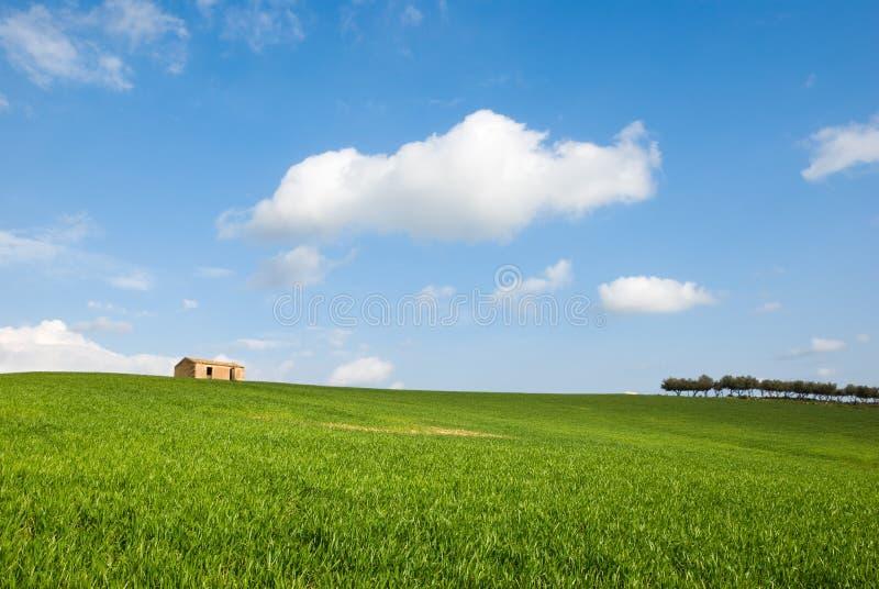 Un campo con un'azienda agricola immagini stock