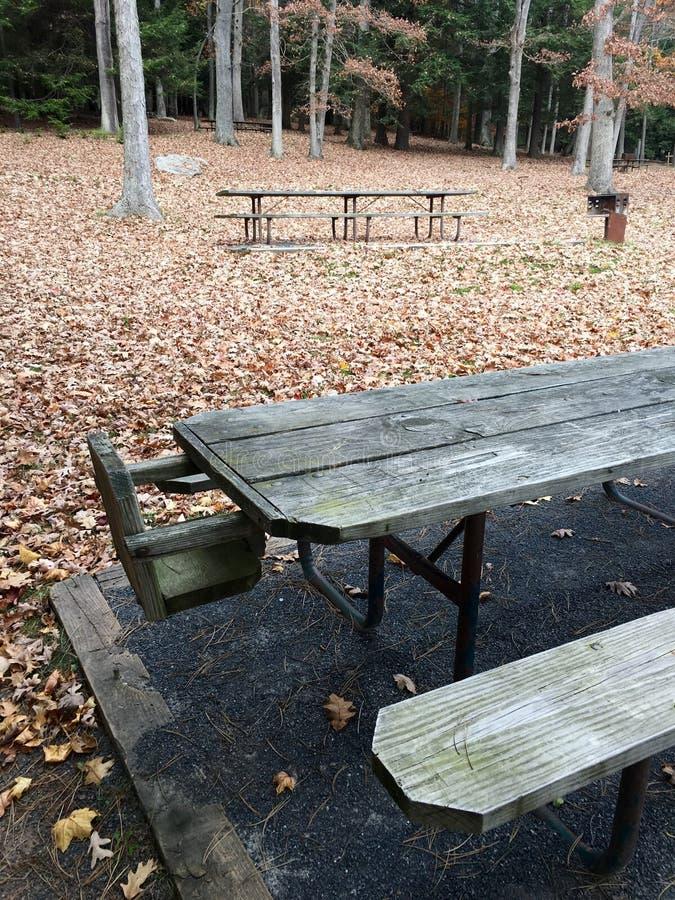 Un campo da giuoco solo durante l'autunno immagini stock