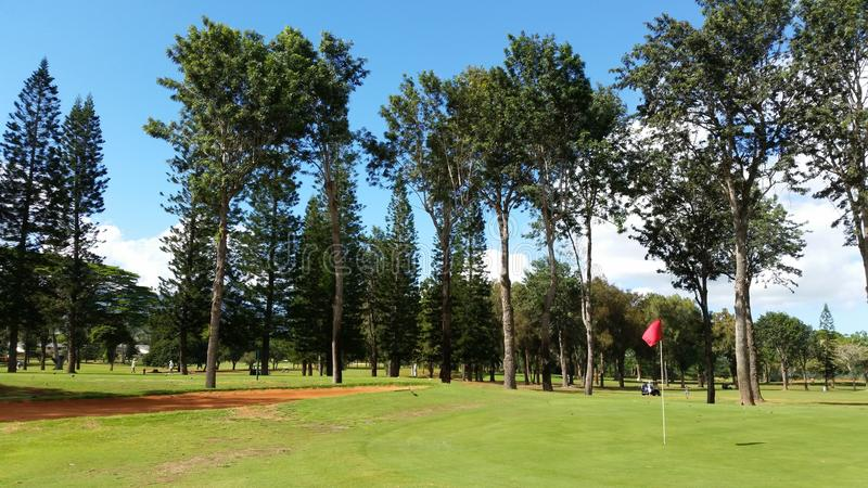 Un campo da golf tropicale fotografia stock
