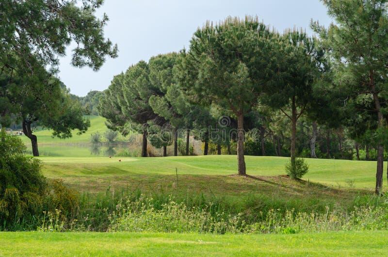 Un campo da golf immagine stock libera da diritti