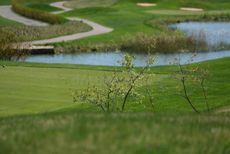 Un campo de golf con los caminos, las arcones y las charcas imagenes de archivo