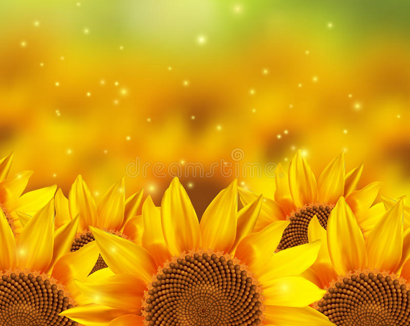Un campo de los girasoles hermosos libre illustration