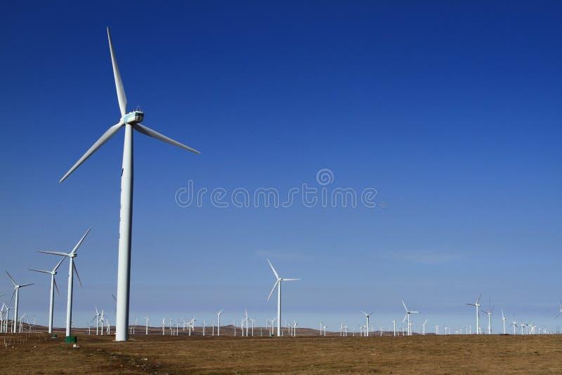 Un campo delle turbine di vento fotografia stock libera da diritti