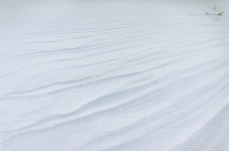 Un campo sitiado por la nieve llano foto de archivo libre de regalías
