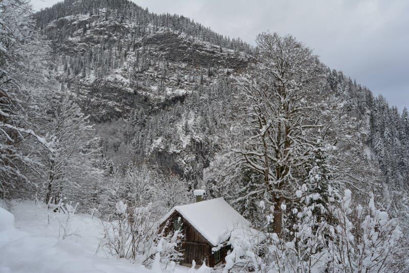Un canal del paseo las montañas nevosas de Hallstatt, Austria Opinión del invierno fotografía de archivo