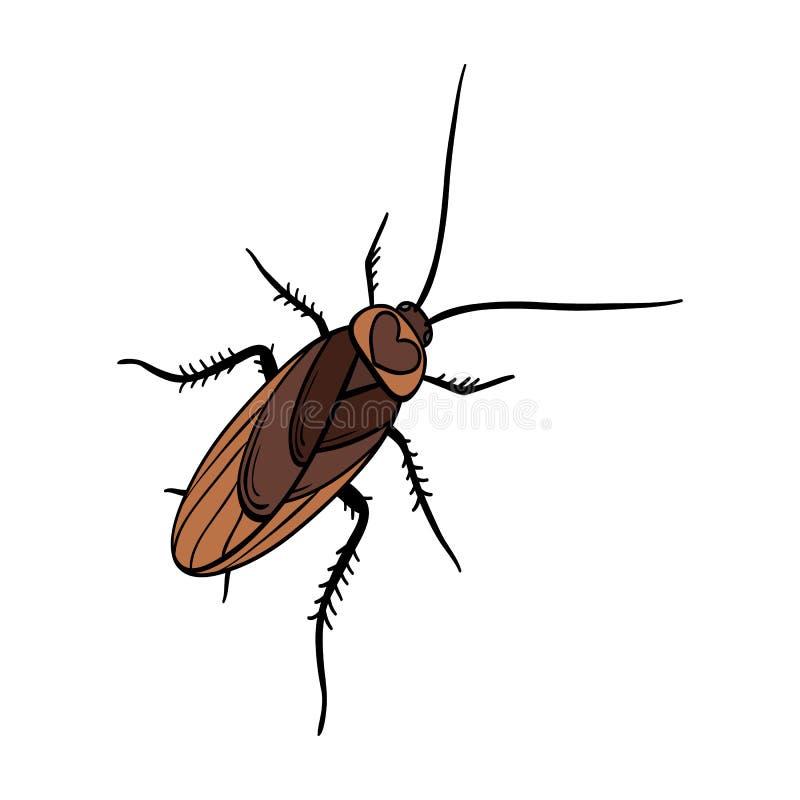 Un cancrelat moustachu Insecte d'arthropode, icône simple de cancrelat en stock de symbole de vecteur de style de bande dessinée  illustration libre de droits