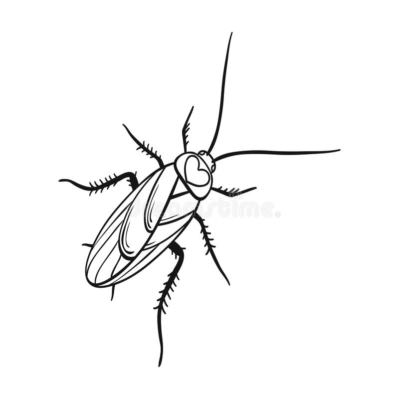 Un cancrelat moustachu Insecte d'arthropode, icône simple de cancrelat en stock de symbole de vecteur de style d'ensemble isométr illustration stock