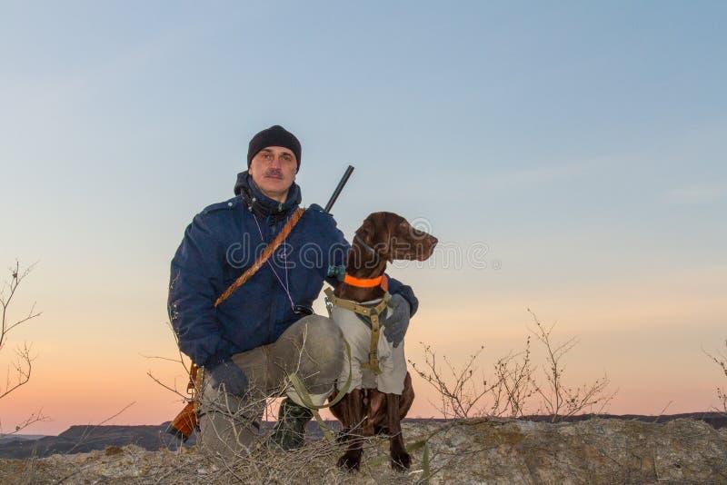 Un cane da caccia del deutsch kurzhaar fotografie stock
