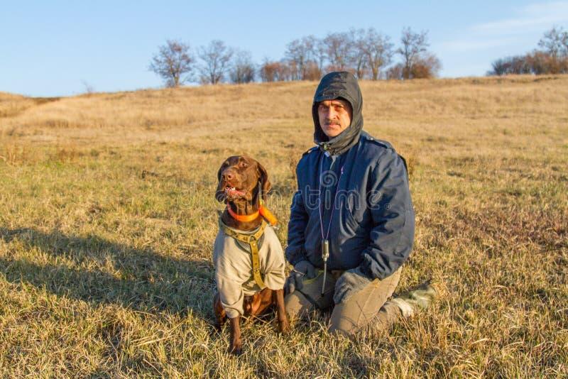 Un cane da caccia del deutsch kurzhaar fotografia stock