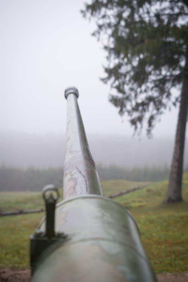un cannone antiaereo automatico s-60 M1950 da 57 millimetri fotografia stock