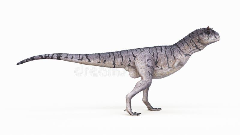 Un carnotaurus ilustración del vector