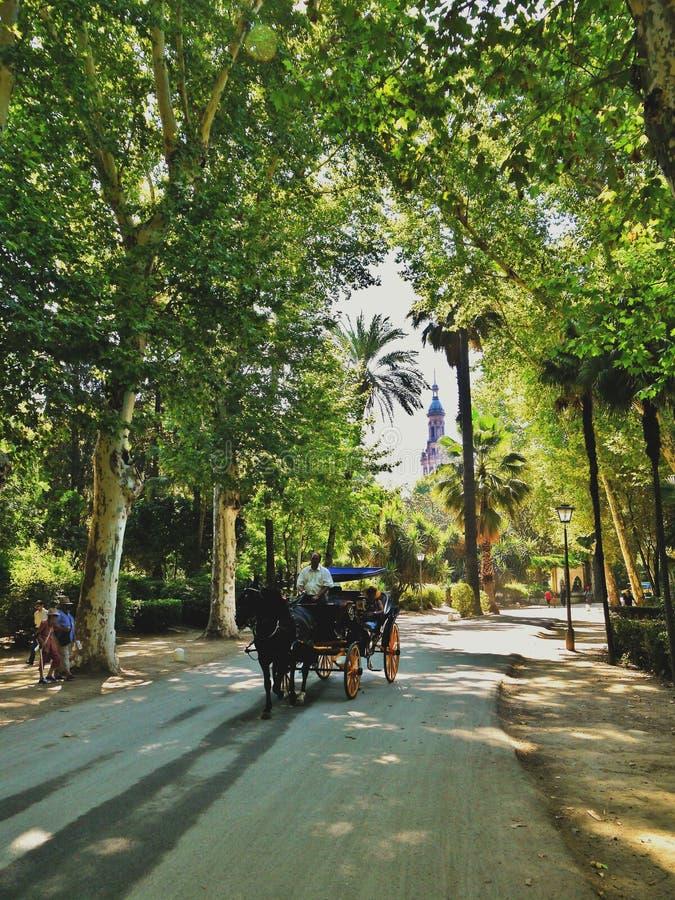 Un carro traído por caballo para los turistas en Sevilla España foto de archivo libre de regalías