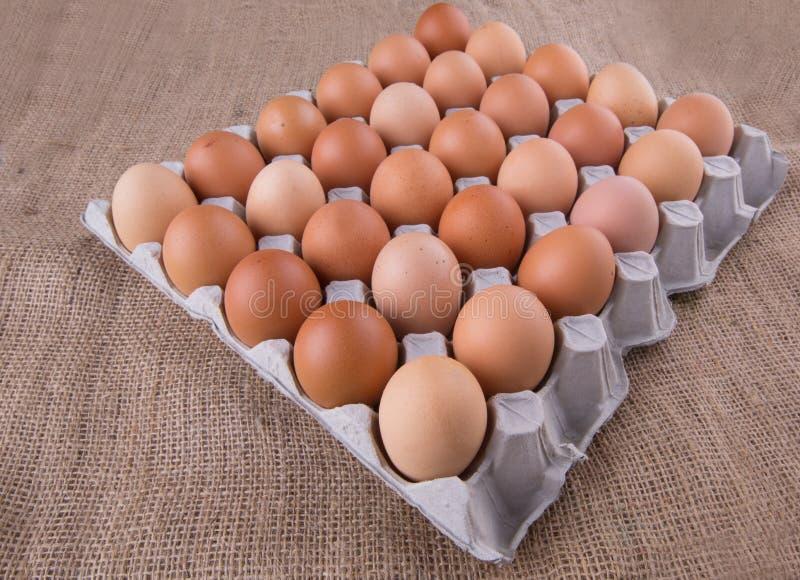 Download Un Cartón Del Pollo Eggs VI Foto de archivo - Imagen de oval, producto: 42428964