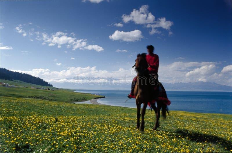 Un cavaliere oltre al lago immagine stock libera da diritti