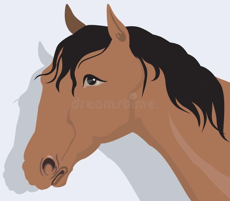 Un cavallo illustrazione vettoriale