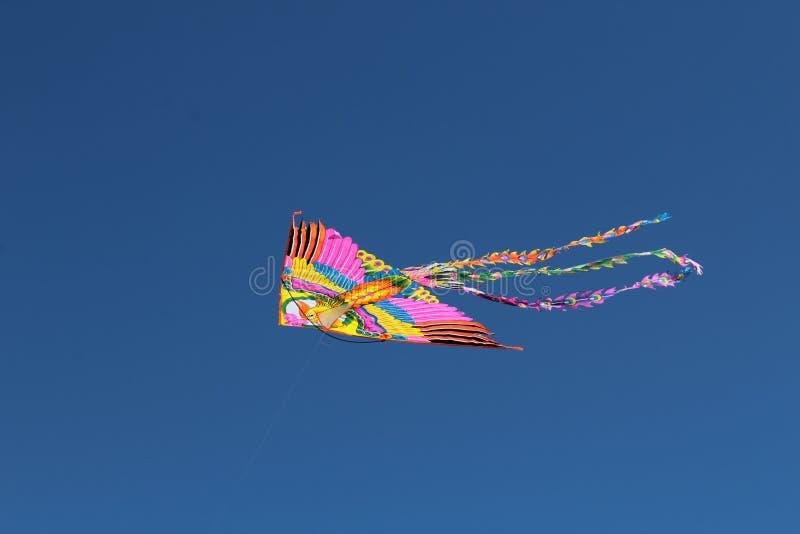 Un cerf-volant avec un oiseau dans le trou russe de ciel photographie stock libre de droits