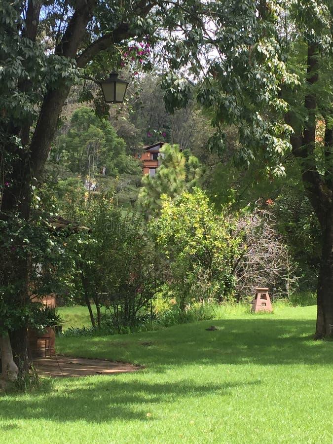 Un certain endroit dans Patzcuaro photographie stock libre de droits