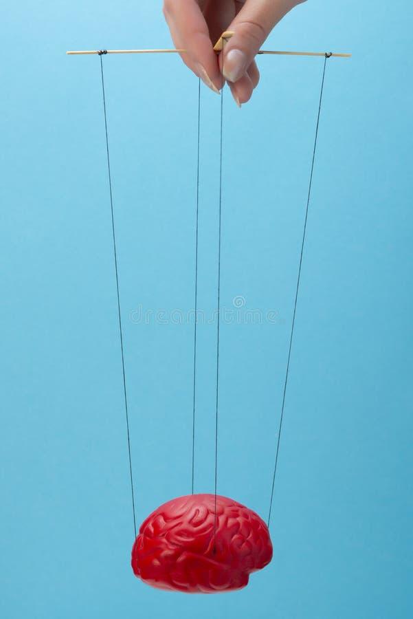 Un cerveau rouge sur un fond bleu, une main qui manoeuvre l'esprit comme une marionnette Concept de contrôle de cerveau photos libres de droits