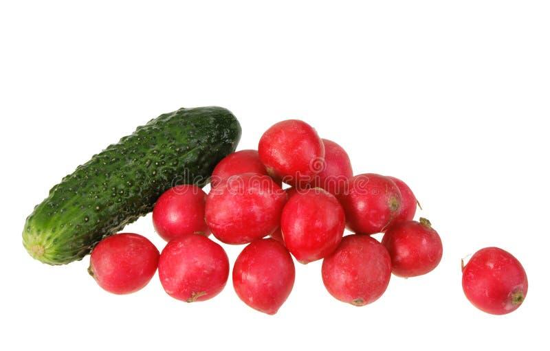 Un cetriolo e gruppo verdi di ravanello rosso del giardino. immagine stock libera da diritti