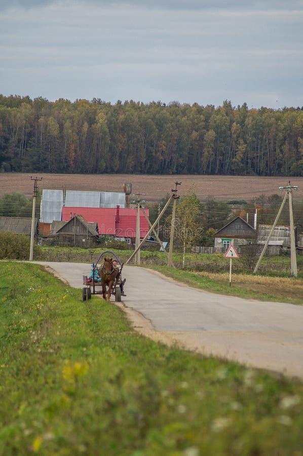 Un chariot avec un cheval dans un village russe photo libre de droits