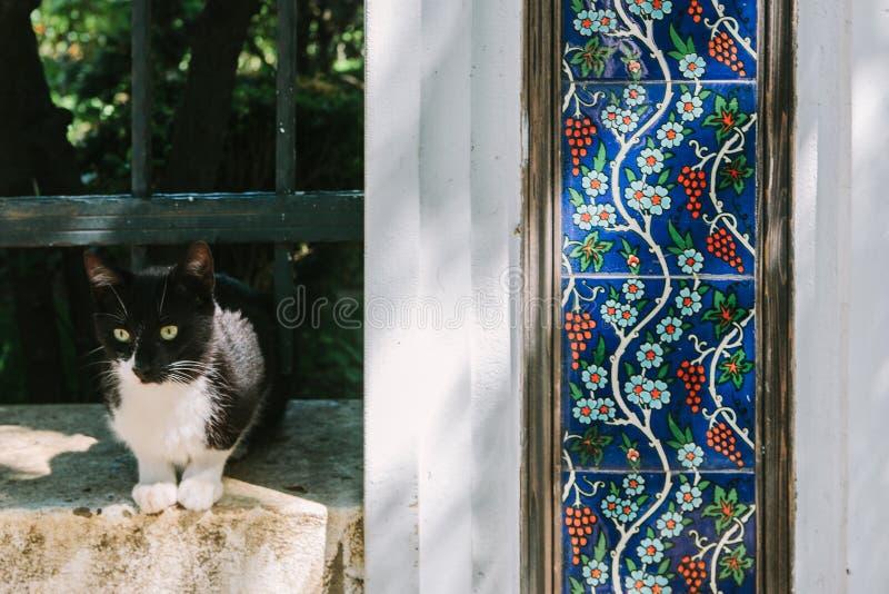 Un chat blanc noir avec les carreaux de céramique décoratifs avec un modèle turc Istanbul, Turquie photo libre de droits