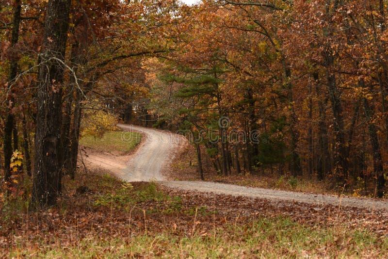 Un chemin à travers les bois dans la chute photographie stock