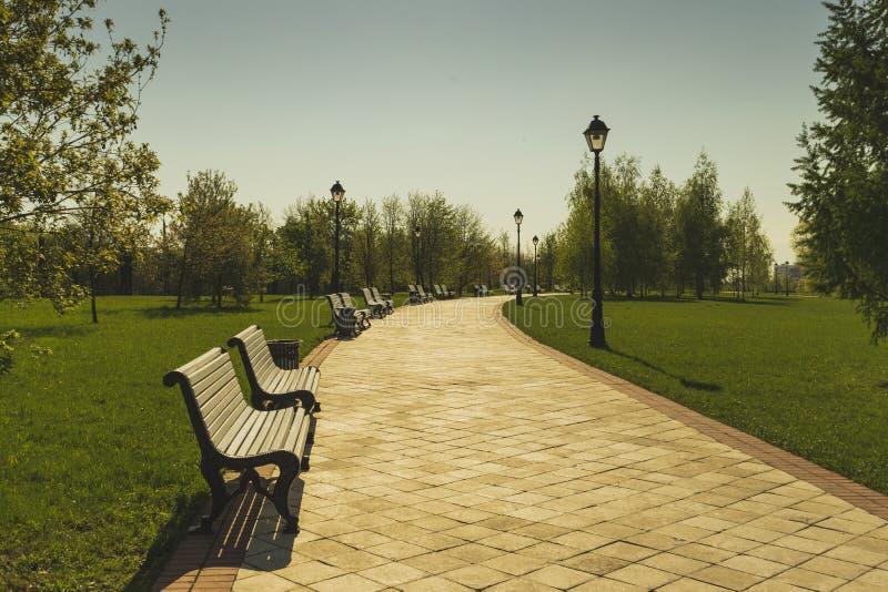 Un chemin avec des bancs en parc pendant l'été photographie stock